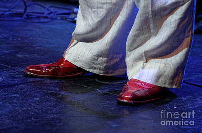 Photograph - Stage Presence by Paul Mashburn