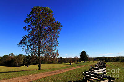 Photograph - Stage Road At Appomattox by Jill Lang