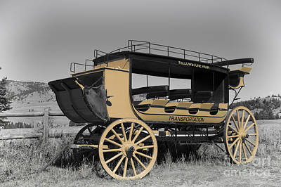 Horse Photograph - Stagecoach Of Yellowstone by Wildlife Fine Art
