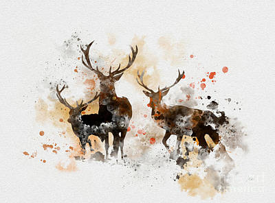 Woodland Mixed Media - Stags by Rebecca Jenkins