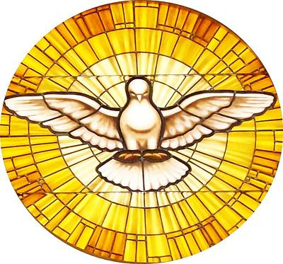 Photograph - Stain Glass Dove by Joseph Frank Baraba