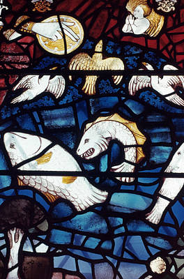 Stained Glass Fish Photograph - Stained Glass: Creation by Granger