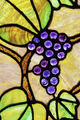 Photograph - Stained Glass Grapes 02 by Jim Dollar