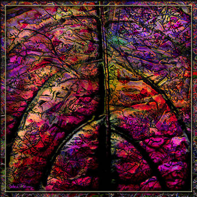 Digital Art - Stained Glass Not by Barbara Berney