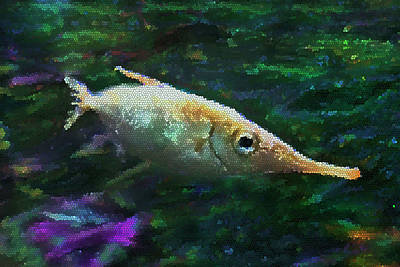Photograph - Stained Glass Sniper Fish by Miroslava Jurcik