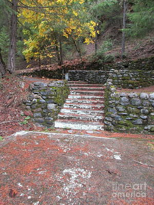 Photograph - Stairs Long Forgotten by Marie Neder
