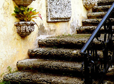 Photograph - Stairs To Life by Patricia Awapara