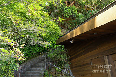 Photograph - Stairs Walkways Passages And Quiet Places Of Sausalito California Dsc6088 by Wingsdomain Art and Photography