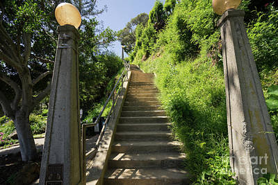 Photograph - Stairs Walkways Passages And Quiet Places Of Sausalito California Dsc6092 by Wingsdomain Art and Photography