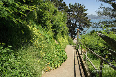 Photograph - Stairs Walkways Passages And Quiet Places Of Sausalito California Dsc6098 by Wingsdomain Art and Photography