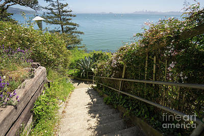 Photograph - Stairs Walkways Passages And Quiet Places Of Sausalito California Dsc6108 by Wingsdomain Art and Photography