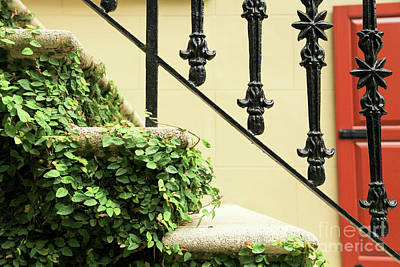 Photograph - Stairs With Red Shutters by Heather Green