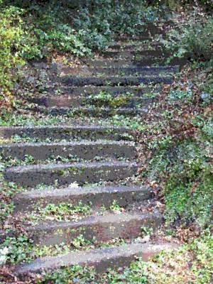 Walkway Digital Art - Stairway by Tim Allen