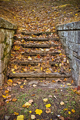 Photograph - Stairway To Autumn by Colleen Kammerer