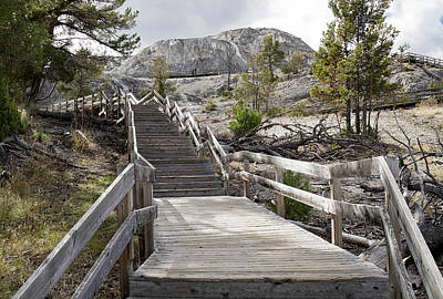Photograph - Stairway To Mammoth by Shirley Mitchell