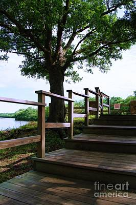Photograph - Stairway To River Overlook by Brigitte Emme
