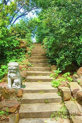 Photograph - Stairway To The Mystical Forest by Janette Boyd and Janie Chase