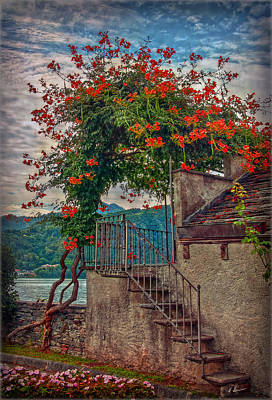Photograph - Stairway To The Terrace by Hanny Heim