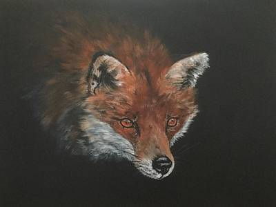Painting - Red Fox In Stalking Mode by Jean Walker