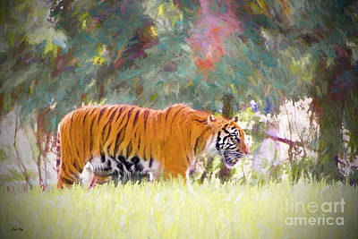 Wild Cats Painting - Stalking Tiger by Judy Kay
