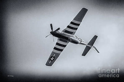 Stallion 51 - P-51d Mustang - Crazy Horse 2 Art Print by Rene Triay Photography