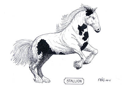Stallion Art Print by Frederic Kohli