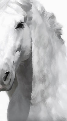 Photograph - Stallion II by Athena Mckinzie