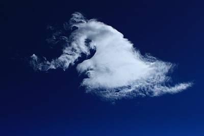 Photograph - Stallion's Neck Cloud by Jim Cotton