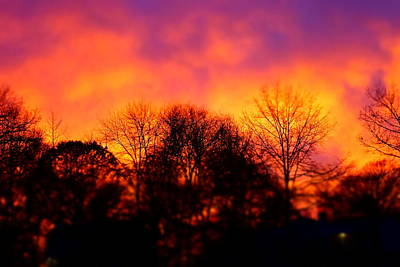 Photograph - Stamford Sunset by Fred Bonilla
