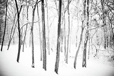 Photograph - Stand Still by Hyuntae Kim