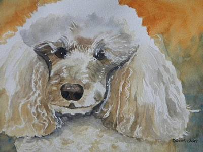 Watercolor Pet Portraits Mixed Media - Standard Poodle  by Donna Cary