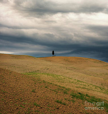 Photograph - Standing Alone I by Yuri Santin