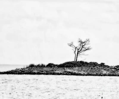 Photograph - Standing Alone by Marcia Lee Jones
