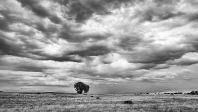 Art Print featuring the photograph Standing Alone by Monte Stevens