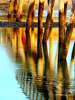 Photograph - Standing Beams by Marcia Lee Jones