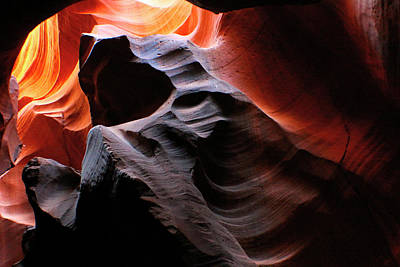 Photograph - Standing Bear by Jon Emery