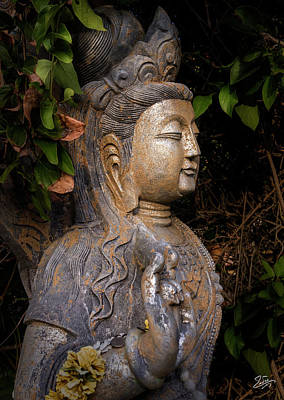 Photograph - Standing Buddha 3 by Endre Balogh