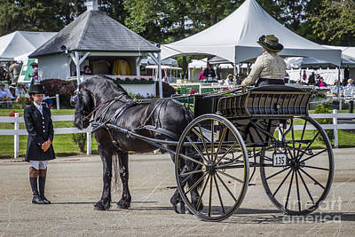 Photograph - Standing Carriage by Joann Long