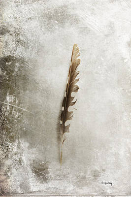 Photograph - Standing Feather by Randi Grace Nilsberg