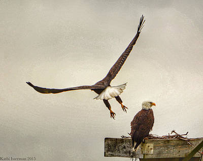 Photograph - Standing Guard I by Kathi Isserman