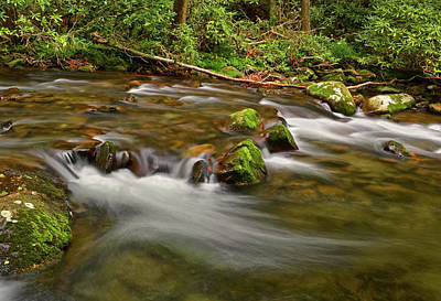 Photograph - Standing In Motion - Mountain Stream 035 by George Bostian