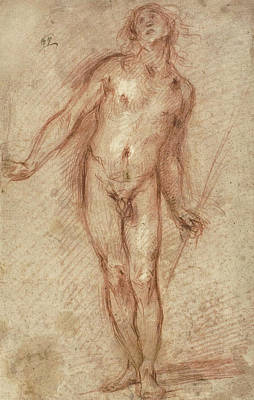 Male Nude Drawing Drawing - Standing Male Nude by Cecco Bravo