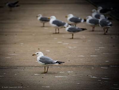 Photograph - Standing Out by Kathi Isserman