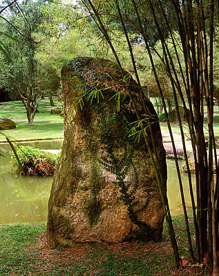 Art Print featuring the photograph Standing Stone With Fern And Bamboo 19a by Gerry Gantt