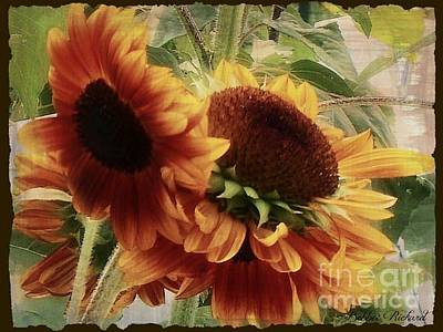 Photograph - Sunflower Floral Series by Bobbee Rickard