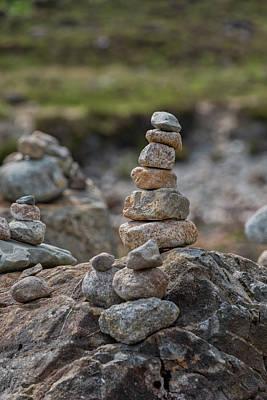 Photograph - Standing Tall 0649 by Teresa Wilson