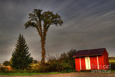 Fall Photograph - Standing Tall by David Bishop