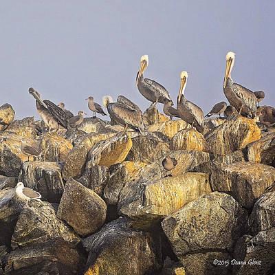 Photograph - Standing Tall by Deana Glenz