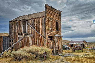 Photograph - Standing Tall In Bodie by Lynn Bauer