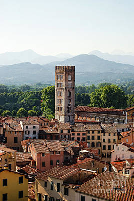 Lucca Photograph - Standing Tall by Vaibhav Sharma